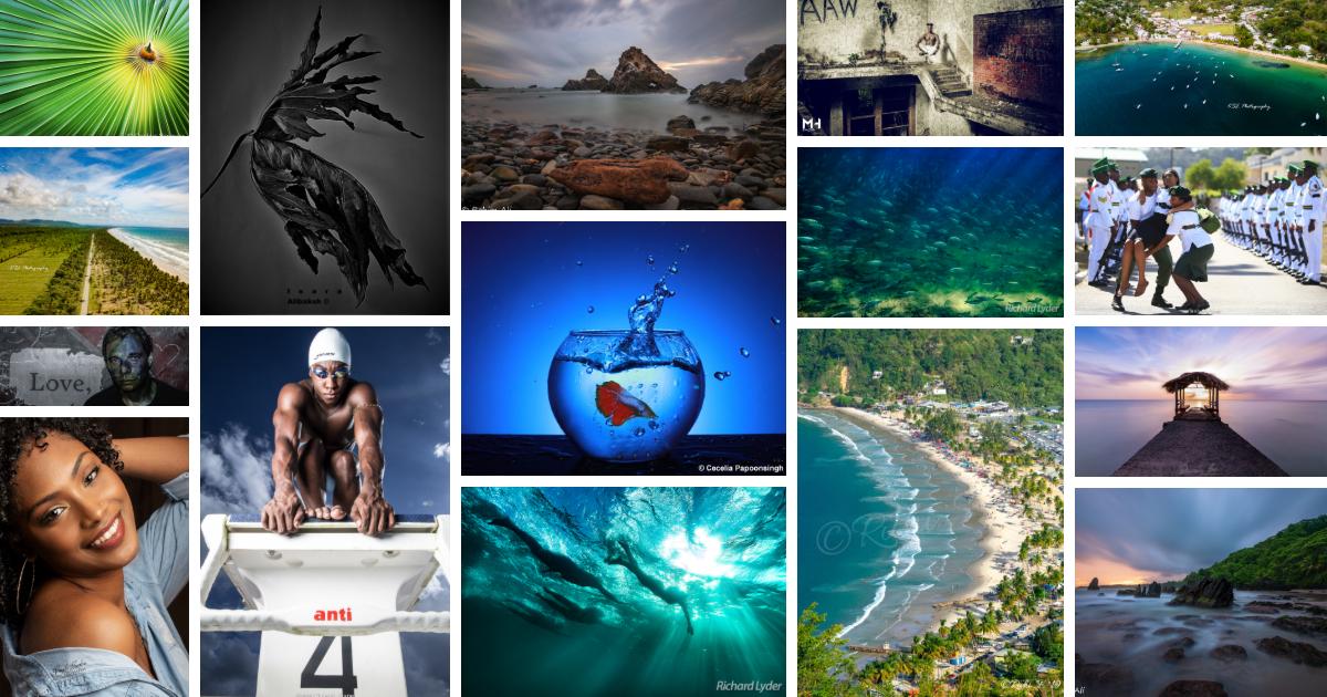 2019 shortlist collage